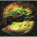 Forêt de symboles